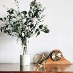 eucalyptus plant for health